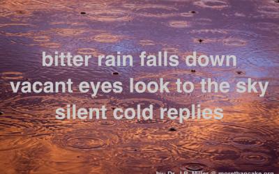 Bitter Rain